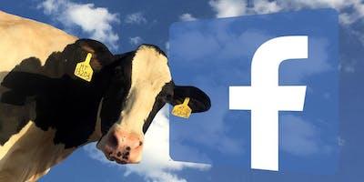 Facebook : comment faire MEUH ?