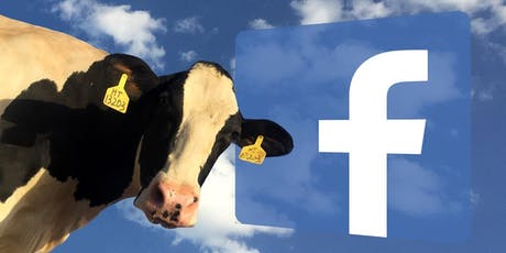 Facebook : comment faire MEUH ? billets