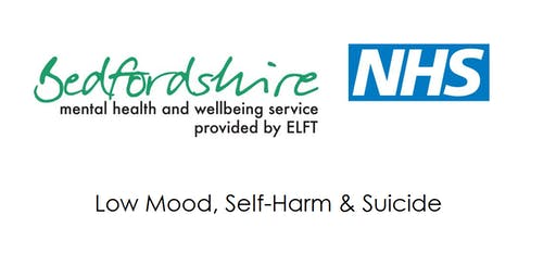 Child & Adolescent Wellbeing Parent Info Session – Self-harm & suicide