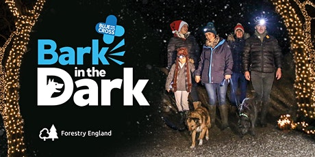 Bark in the Dark - Haldon Forest tickets