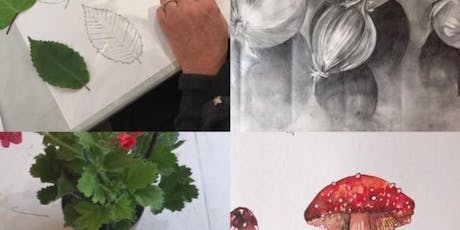 The Art of Drawing from Life tickets