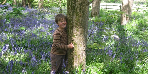 WILDLIFE WATCH - FOREST SCHOOL: SPRING ADVENTURE