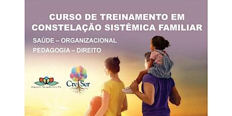 CURSO DE TREINAMENTO EM CONSTELAÇÃO SISTÊMICA FAMILIAR  SAÚDE – ORGANIZACIONAL – PEDAGOGIA – DIREITO ingressos