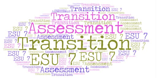 Transition Assessment Training #3