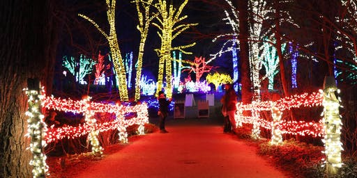 Meadowlark's Winter Walk of Lights