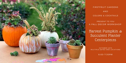 Fall Decor Workshop: Harvest Pumpkin & Succulent Planter Centerpieces!