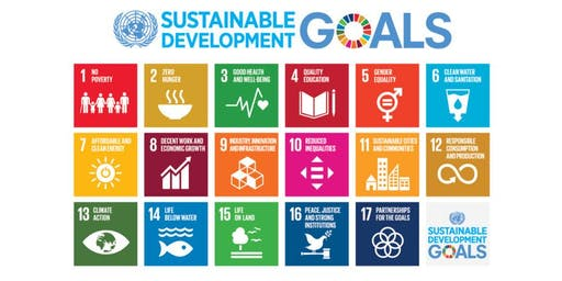 Spotlight on UN Sustainable Development Goals & Plastics