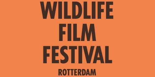 Wildlife Film Festival Special - Into The Jungle