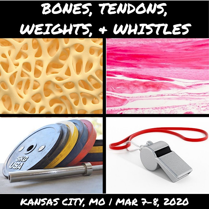 Bones, Tendons, Weights, & Whistles image