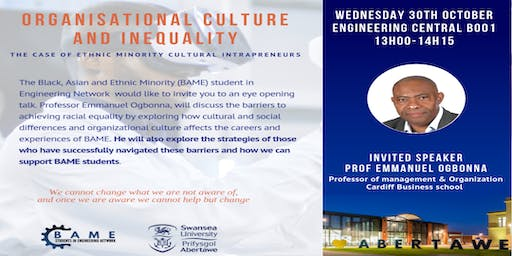 Organisational Culture and Inequality: The case of ethnic minority cultural intrapreneurs