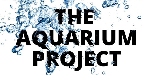 The Aquarium Project: Strategic Doing Session #3-RETURNING Attendees