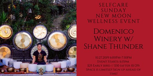 SelfCare Sunday: Wellness Event @ Domenico Winery