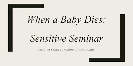 When a Baby Dies Sensitivity Seminar tickets