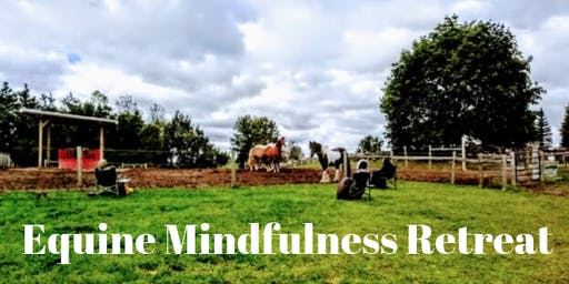 EQUINE MINDFULNESS RETREAT: Happiness is this Moment