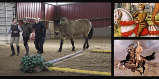 Equine-Facilitated Energy & Leadership Workshop