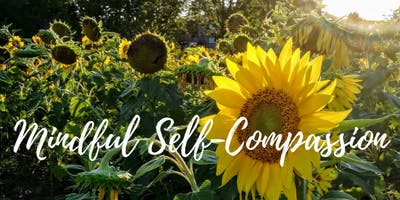Mindful Self-Compassion Program
