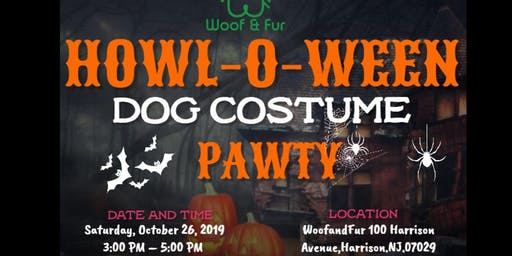 Halloween Dog Costume Party