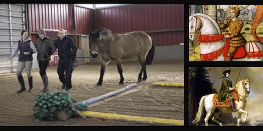 Professional Women's Leadership Equine-Facilitated Workshop