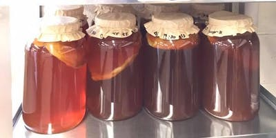 Kombucha Home Brew Competition