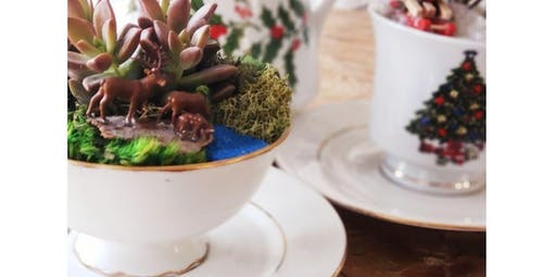 Holiday Tea Party with Succulents & Cookie Decorating (2019-12-01 starts at 10:00 AM)