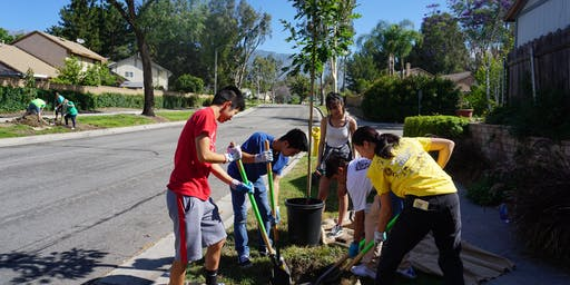Green Crew Tree Planting in Rancho Cucamonga!