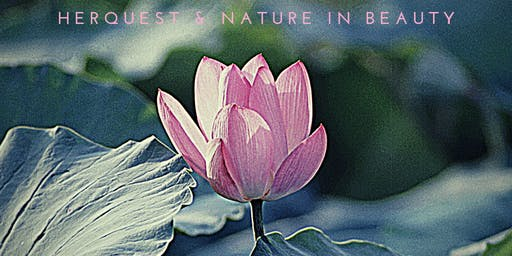 Pamper Me!  HerQuest Experiences  at Nature in Beauty