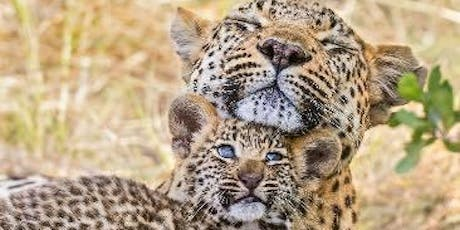An Exclusive Afternoon with Renowned Wildlife Photographer Suzi Eszterhas tickets