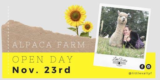 Alpaca Farm Open Day - Little Valley Farm, Hunter Valley