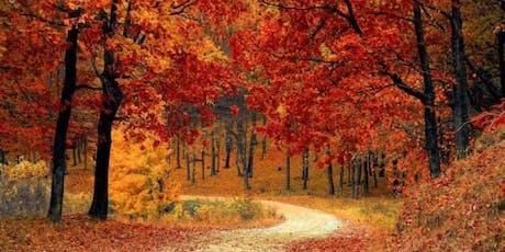 Autumn mindfulness retreat day  tickets