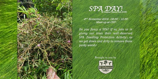 SPA Day! Seedling Protection Activity @ Chestnut Nature Park