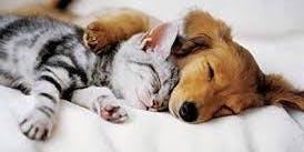 Hugs and Cuddle Workshop