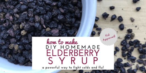 Learn To Make Elderberry Syrup For This Flu Season