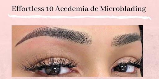 Academia Effortless 10 Entrenamiento de Microblading en Español 3 de Noviembre - Raleigh NC.