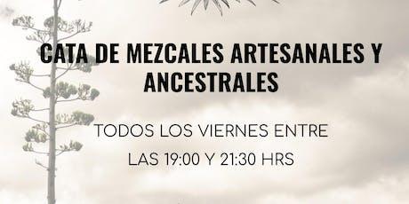 Cata de Mezcales Artesanales y Ancestrales entradas