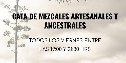 Cata de Mezcales Artesanales y Ancestrales