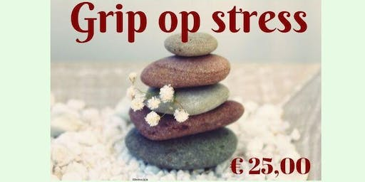 Workshop Grip op Stress + individuele coaching
