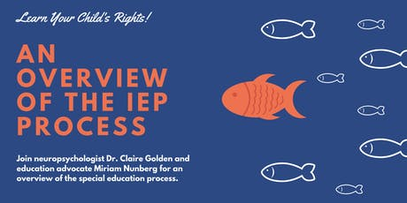 An Overview of the IEP Process tickets