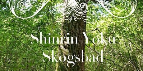 Shinrin yoku - Skogsbad i Torup Bokskogen tickets