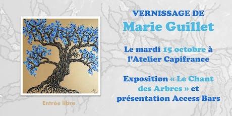 Vernissage Marie Guillet billets