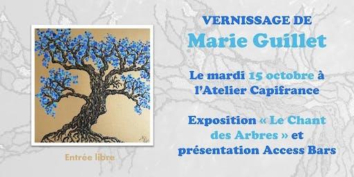 Vernissage Marie Guillet