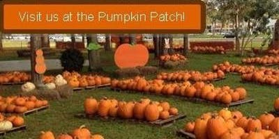 The Pumpkin Patch is Back!
