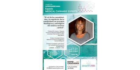 MEDICAL CANNABIS EXPERTS entradas