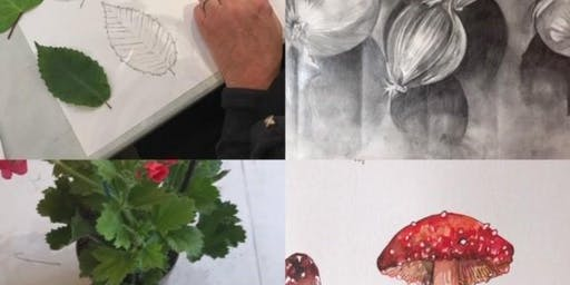 The Art of Drawing and Painting from Life