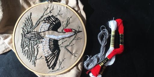 Extinct Embroidery: Ivory Billed Woodpecker