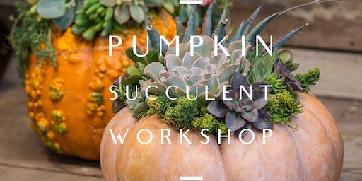 Pumpkin Succulent Workshop with Fall Essential Oil Room Spray