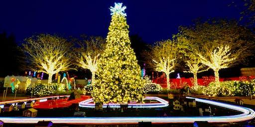 Holiday Lights at the Florida Botanical Gardens 2019