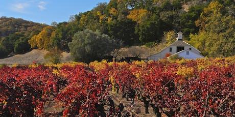 SoCel Wine Club  Soirees - Autumn Wines | Nov  3 & 4 | Free to members! tickets