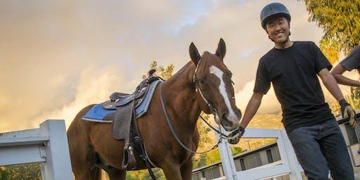 Horsemanship Merit Badge in Palos Verdes!
