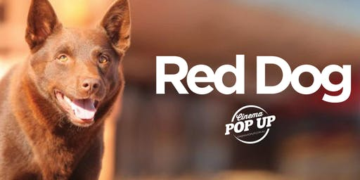Cinema Pop Up - Red Dog - Lilydale