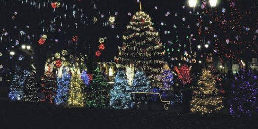 Gallipolis in Lights Holiday Tree Walk